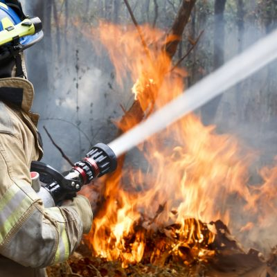 Firefighter resume example, firefighter cover letter, dfes job, department of fire and emergency services