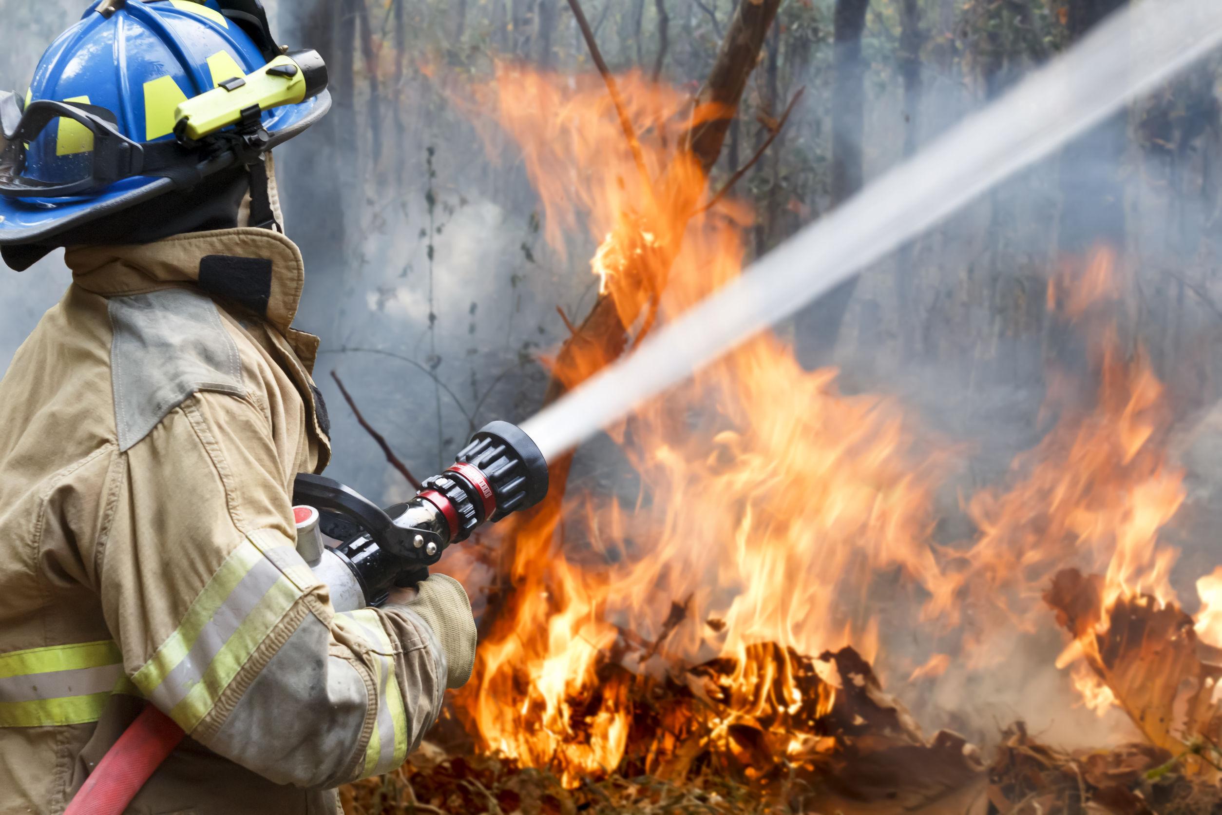 firefighter resume example for dfes firefighter jobs